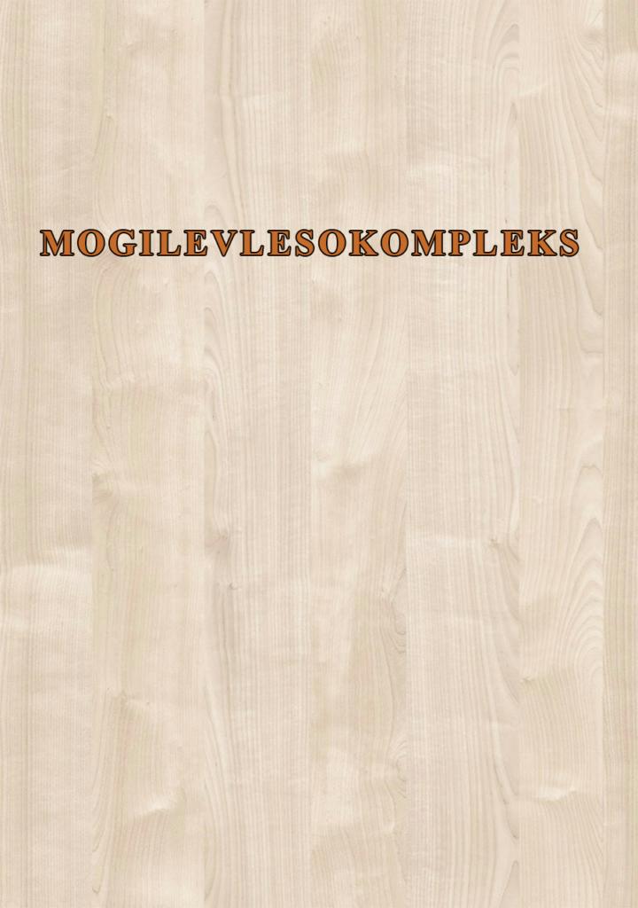 MOGILEVLESOKOMPLAKS